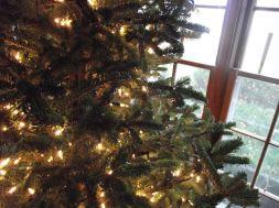 finished Christmas tree lights
