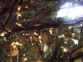 under branch christmas lights