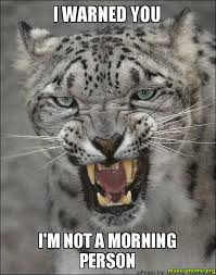 hissing cat not a morning person