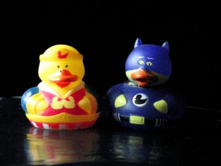 Bat-duck and Wonder-duck