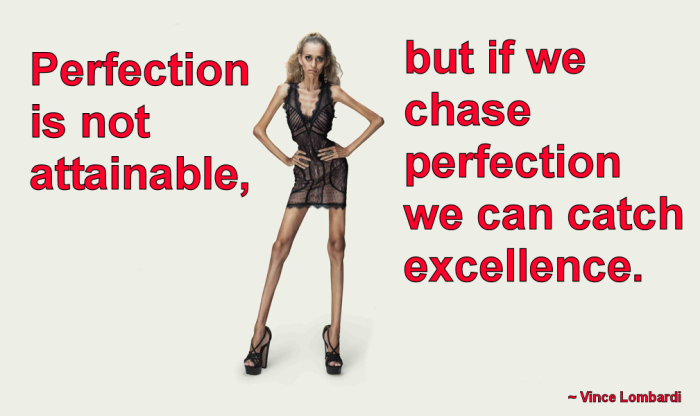 chasing-perfection