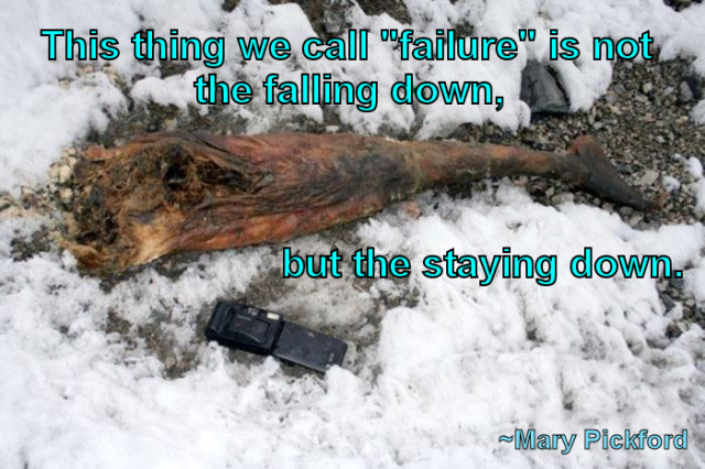 this-thing-we-call-failure