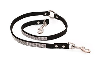 leash coupler with sparkles