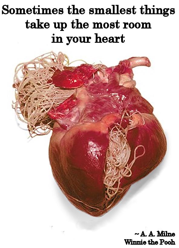 Pooh's Heartworm