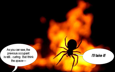 spider realtor sells burning web to eager spider buyer