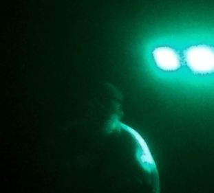 blurry photo of bearded man singing karaoke; obscured by fog and green stage lights