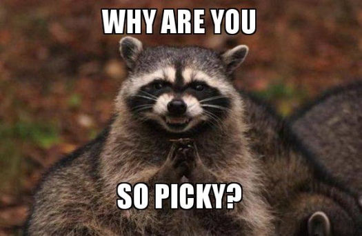 "raccoon meme ""why are you so picky?"""