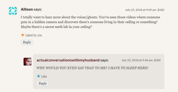 """Comment: """"I totally want to hear more about the voices/ghosts. You've seen those videos where someone puts in a hidden camera and discovers there's someone living in their ceiling or something? Maybe there's a secret meth lab in your ceiling?"""" Reply: """"WHY WOULD YOU EVEN SAY THAT TO ME? I HAVE TO SLEEP HERE!"""""""