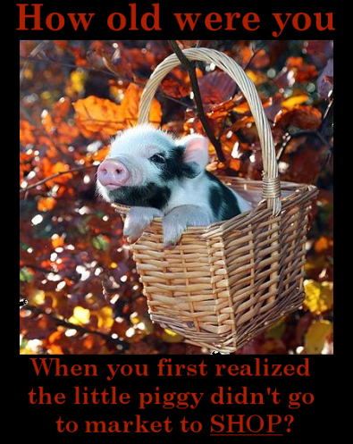 "piglet in a basket amid fall foliage. Text reads, ""How old were you when you first realized the little piggy didn't go to market to SHOP?"""