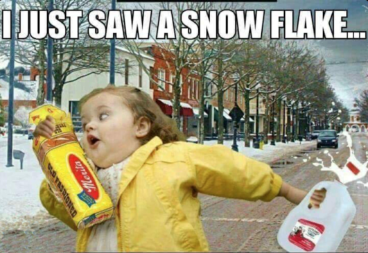 "meme: girl in raincoat rushing off with milk and bread; text reads: ""I JUST SAW A SNOW FLAKE"""